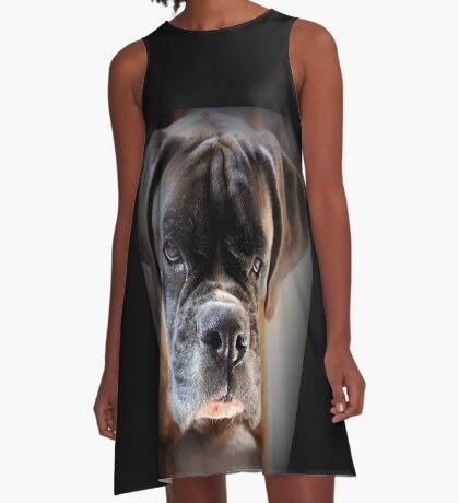 Gehen Sie voran .... Machen Sie meinen Tag ~ Boxer Dogs Series ~ A-Linien Kleid