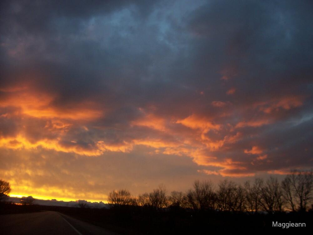 An Oklahoma Winter Sunset by Maggieann