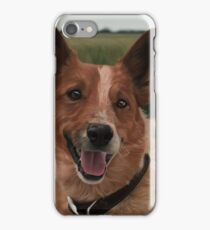 Heeler/Australian Shepherd  iPhone Case/Skin