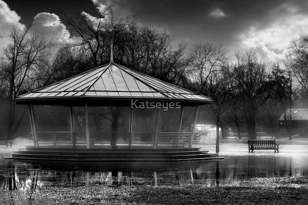 The Thames Flood 2008 by Katseyes