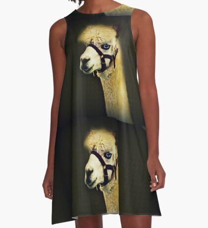 Eine andere Art von Alpaka A-Linien Kleid