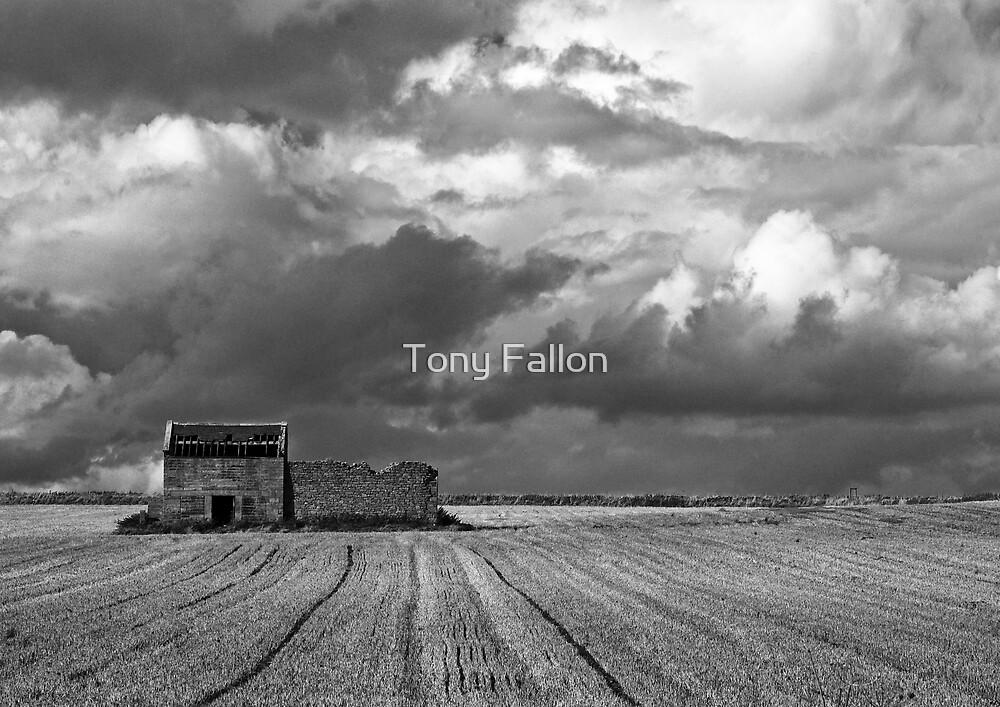 The Old Barn by Tony Fallon