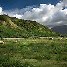 Approaching Na Pali by Sashy