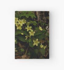 Primrose, Drumlamph Wood, County Derry Hardcover Journal