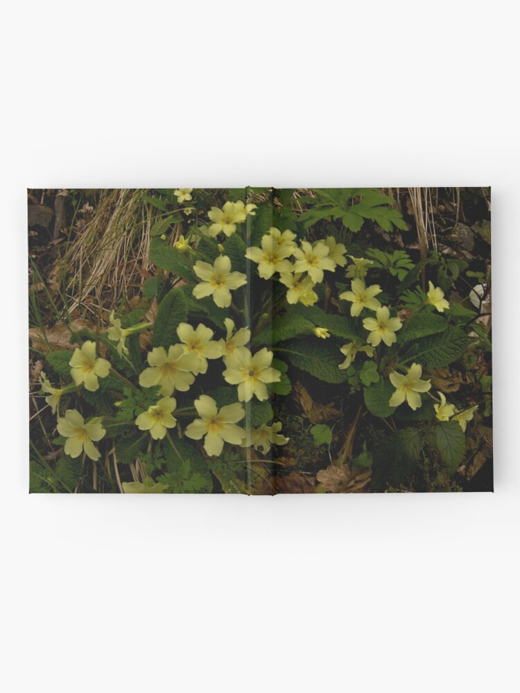 Alternate view of Primrose, Drumlamph Wood, County Derry Hardcover Journal