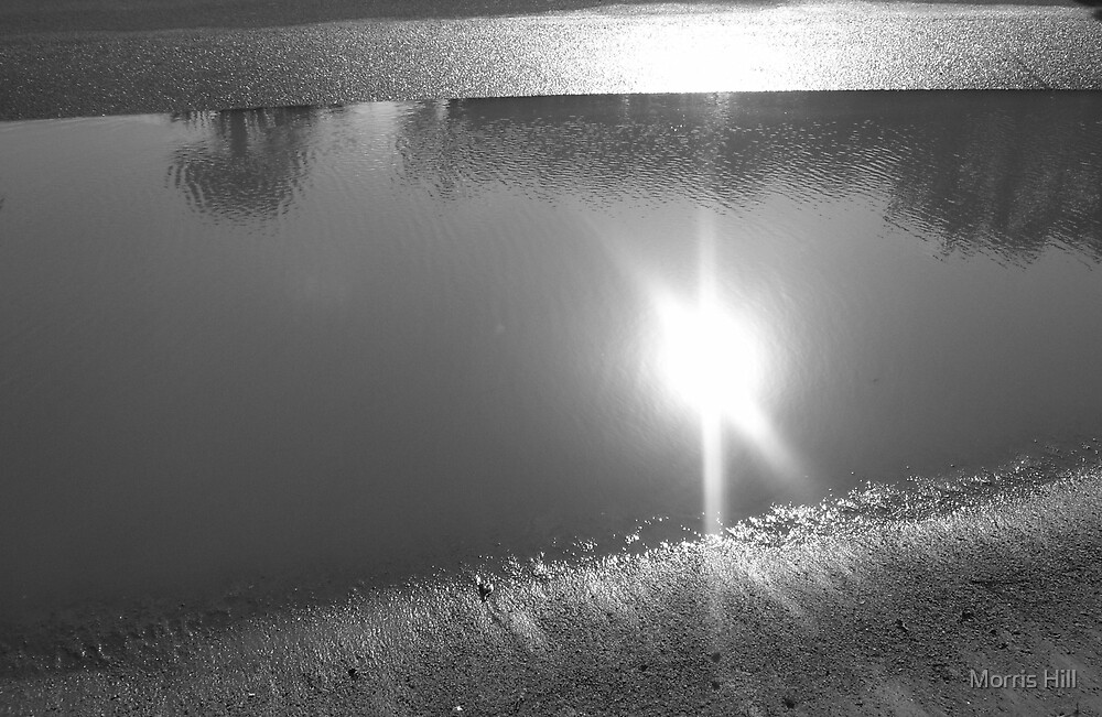puddle sunset by Morris Hill
