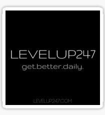 LevelUp247 Sticker - Classic Sticker