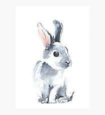 Moon Rabbit II Photographic Print