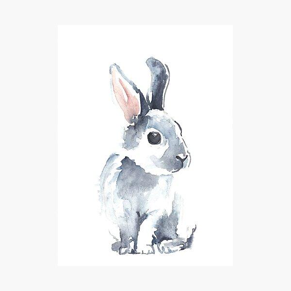 Moon Rabbit II Photographic Print