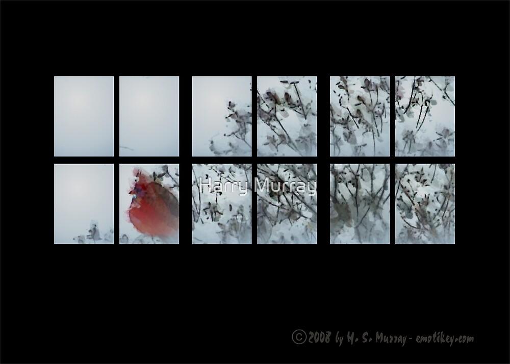 Thru my window II by Harry Murray