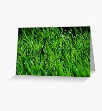 High Grass Greeting Card