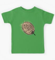 Echidna Looking For Ants Kids Clothes