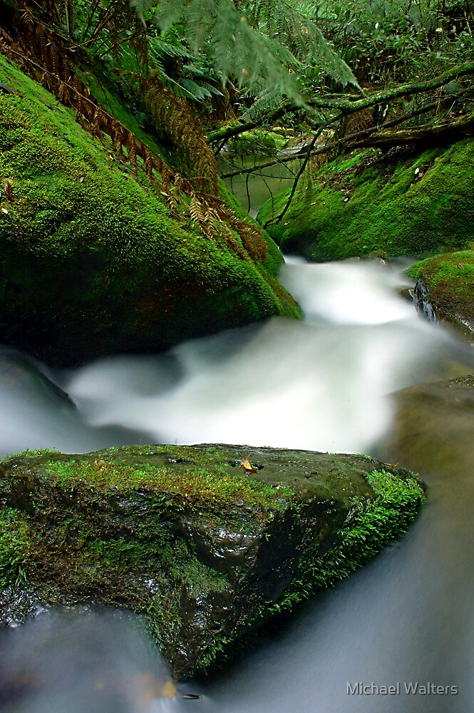 Stream by Michael Walters