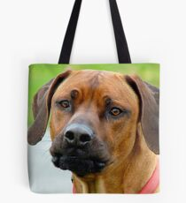 Aww.. You've Got Chooks Running Round Your Yard - Rhodesian Ridgeback - NZ Tote Bag