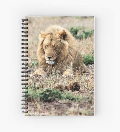 TOTALLY EXHAUSTED - THE LION – Panthera leo Spiral Notebook