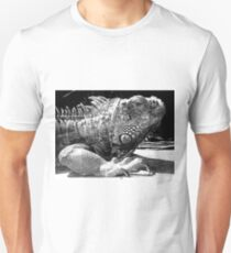 Armoured without a care Unisex T-Shirt