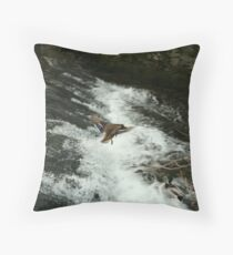 flying duck over water Throw Pillow