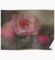 Rose Time by Lorraine McCarthy Poster
