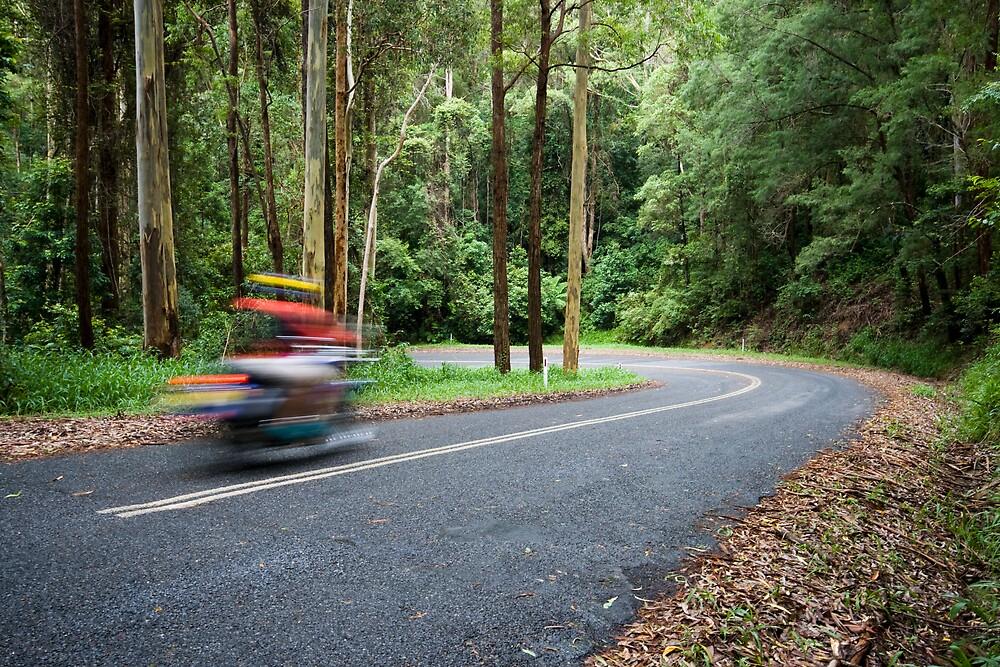 Cruising Mount Brown Road by Sam Allen