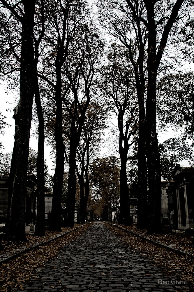 The Cemetary Path by Ben Grant