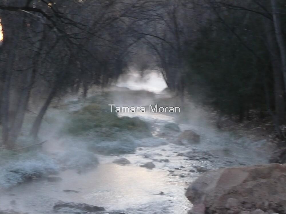 RIVER  by TAMARA MORAN