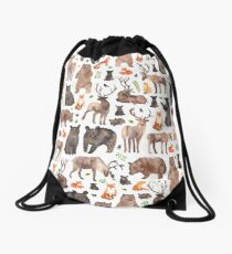 Woodland Animals Drawstring Bag