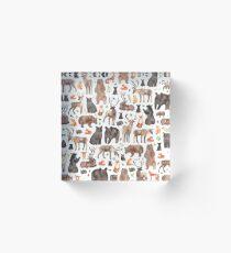 Woodland Animals Acrylic Block