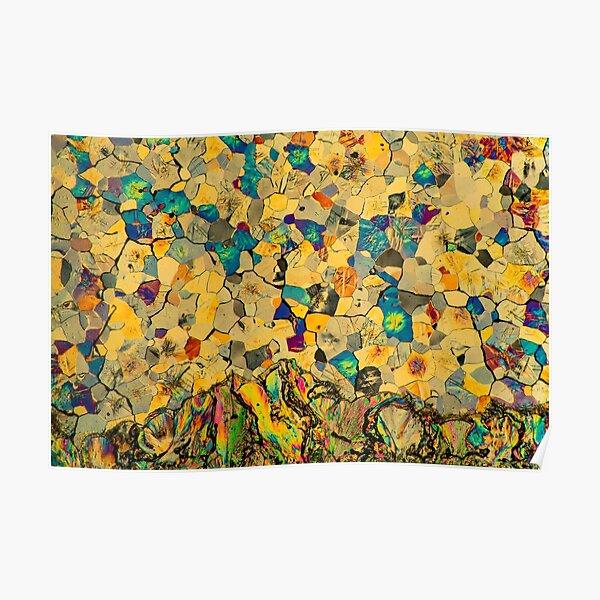Trimethyl Tesselated Mosaic Poster