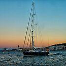 Sailing home. by naranzaria