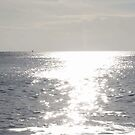 Sunlight sparkles on the sea by Jax Blunt