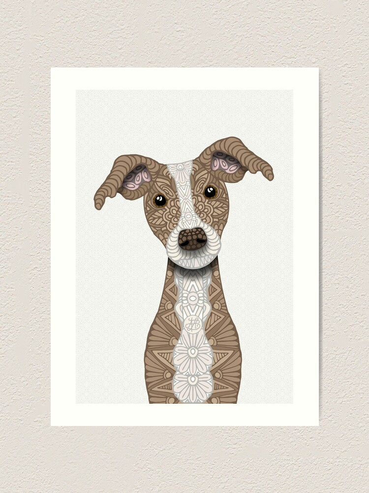Framed Print Picture Poster Dog Art Adorable Sleeping Greyhound Black /& White