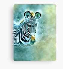 Grevys Zebra, Equus gevyi, Photographed at Samburu National Reserve, Kenya Canvas Print