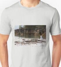 Lone Seagull, Jervis Bay, NSW, Australia Unisex T-Shirt