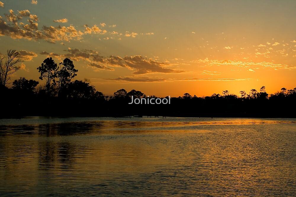 Golden Bayou by Jonicool