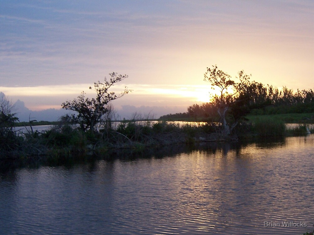 Sunrise in the Everglades by Brian Willocks