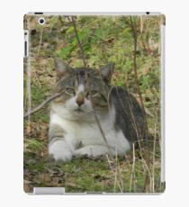 You're Scaring the BIRDS! - View Larger iPad Case/Skin