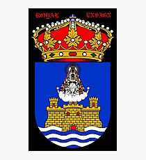 ROYAL ENSIGN: Vintage Crown Coat of Arms Print Photographic Print