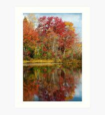 Fall Tree Reflection Art Print