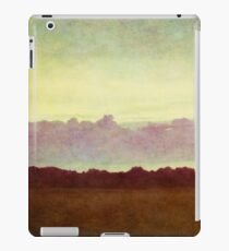 horizon horizon iPad Case/Skin