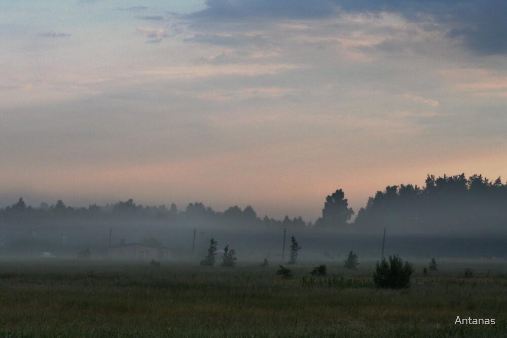 Foggy Village by Antanas