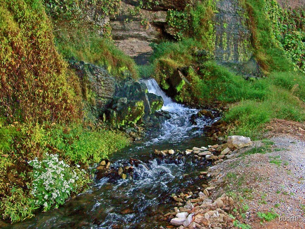 waterfall at wilson dam by budrfli