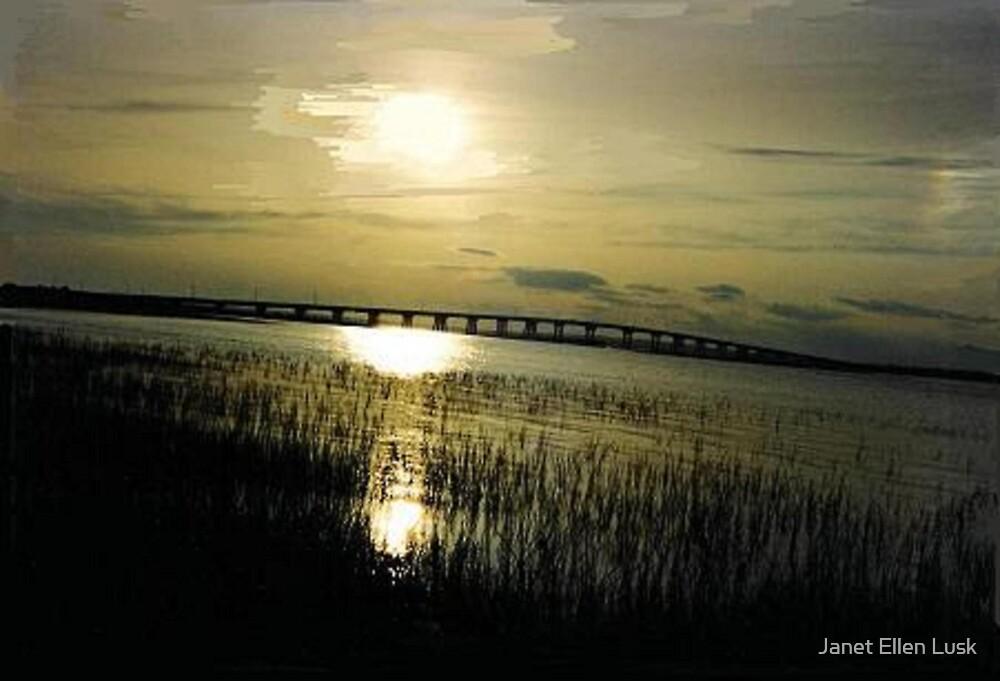 Moon Reflections on the Marsh  by Janet Ellen Lusk
