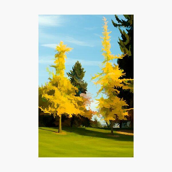Golden Autumn Photographic Print