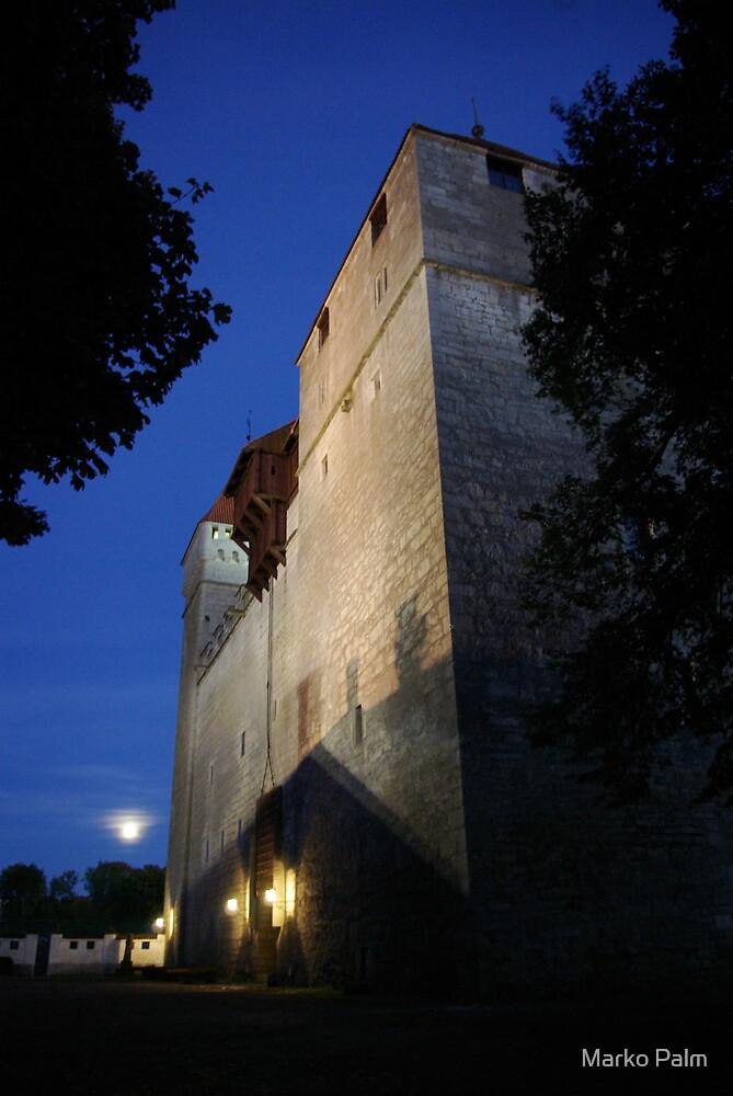 Moonlight Castle by Marko Palm