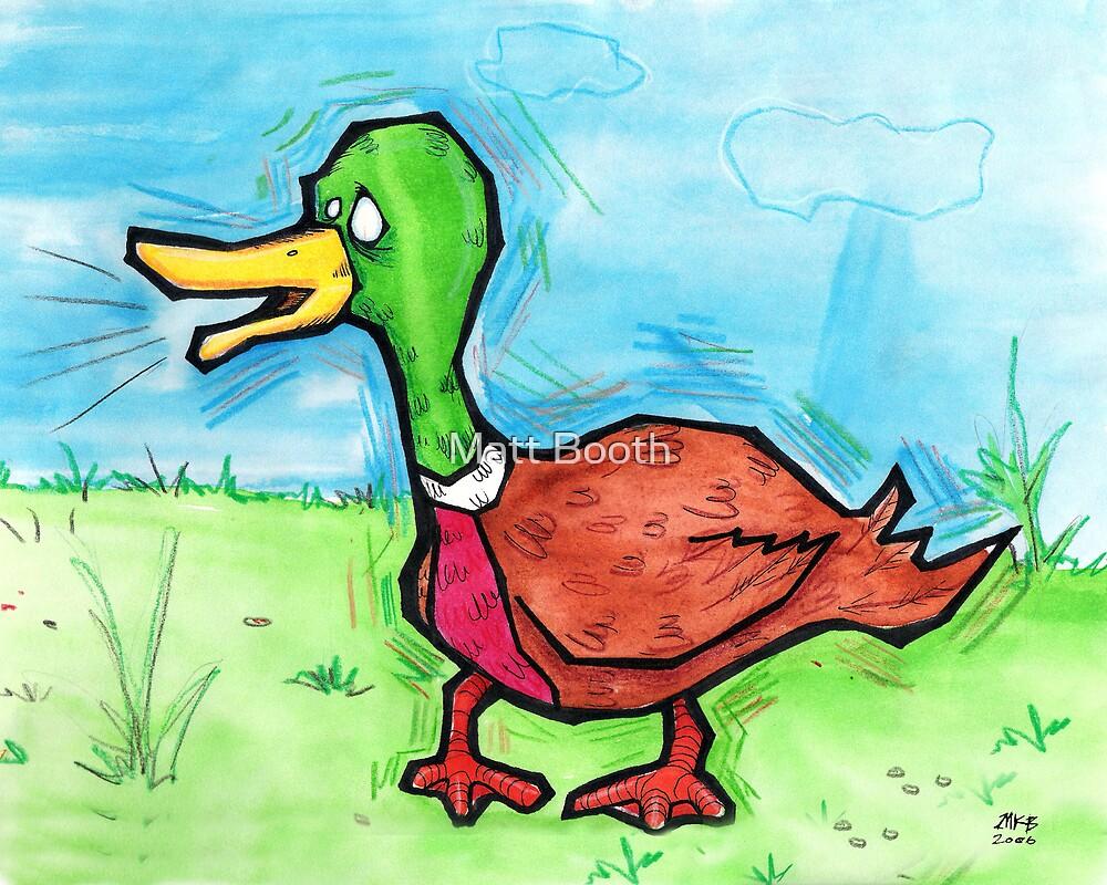 Duck by Matt Booth