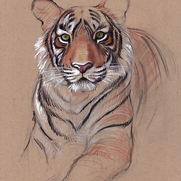 UNFINISHED BUSINESS - Original Tiger Drawing - Mixed Media (acrylic paint & pencil) by tranquilwaters