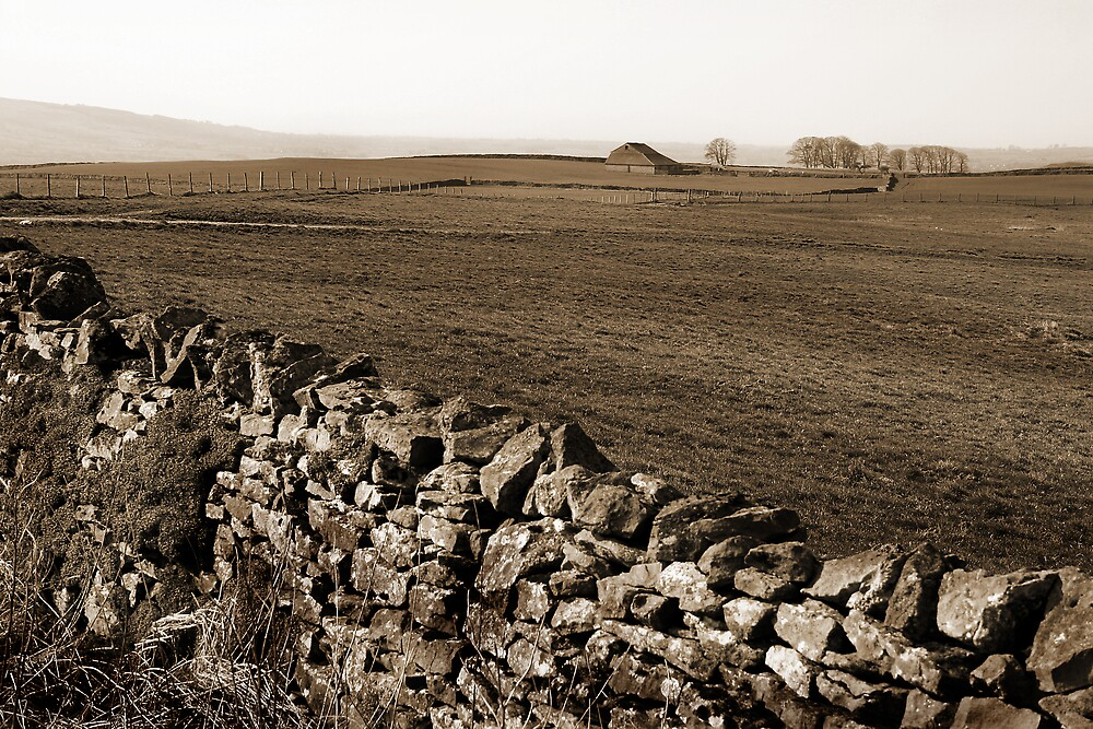 Trough of Bowland panorama by Bev Evans