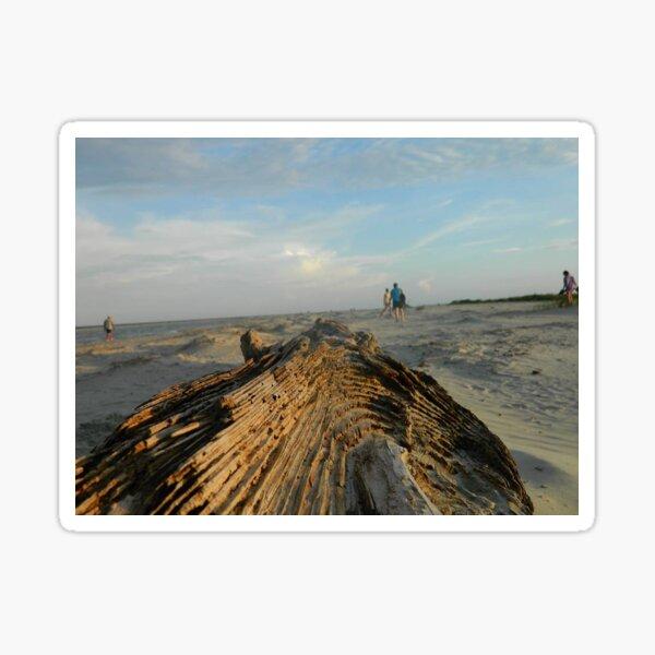 Drift Wood Sticker