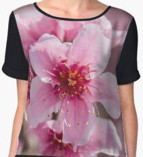 Peach Blossoms 14 Chiffon Top