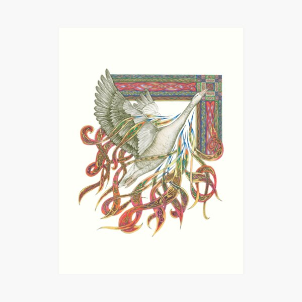 Wild Goose Art Print
